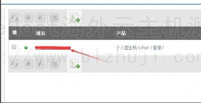 看到自己的主机,直接点击绑定的域名进入